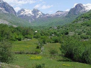 Bruthabitat der Sperbergrasmücke in Albanien. Foto: B.Stumberger