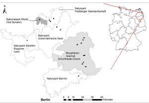 Lage der Untersuchungsflächen, alle in Großschutzgebietenim Nordosten Deutschlands gelegen.